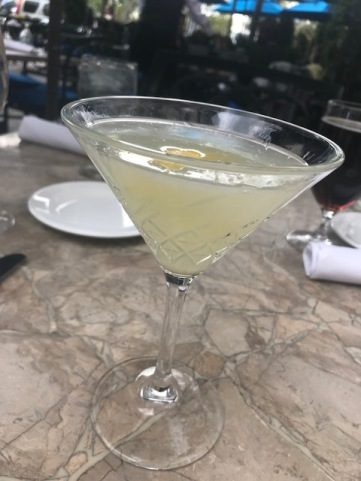 The Willard Martini